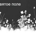 ЖЖ-сообщество Святое поле