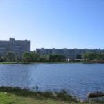 Пруд, озеро на проспекте Просвещения, 40