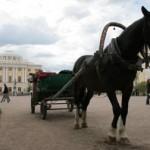 Павловск, Павловский парк, дворец