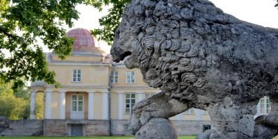 Усадьба Строгановых Марьино, лев