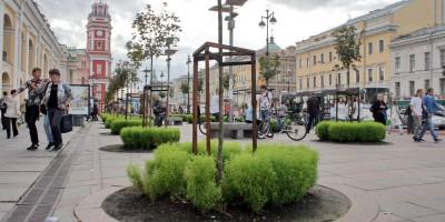 Гостиный двор на Невском проспекте, деревья, клены