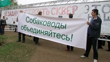 Сад Ивана Фомина, проспект Просвещения, 40, митинг