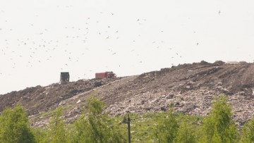 В Петербурге закроют свалки и запустят новые заводы для мусора