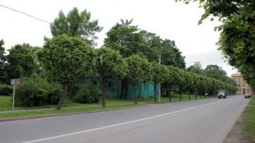 Сквер в Московском переулке Пушкина