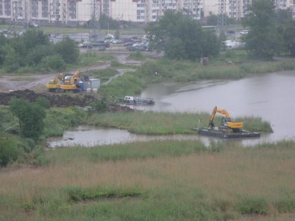 Озеро Долгое, чистка