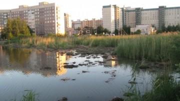 Долгое озеро, чистка