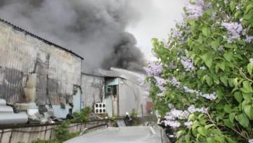 Пожар на Челиева, 11