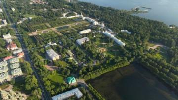 Пригород Петербурга, Петергоф