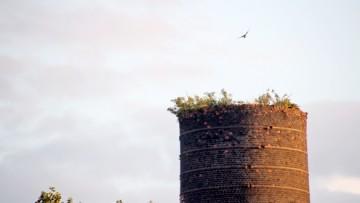 Дымовая труба электростанции на Обводном
