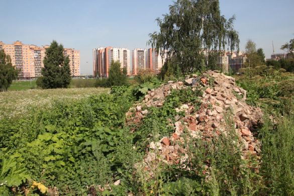 Остатки исторического дома в Кудрове