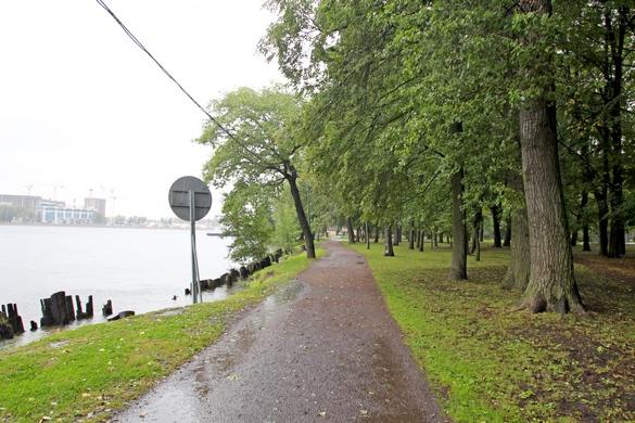 Лопухинский сад, Малая Невка