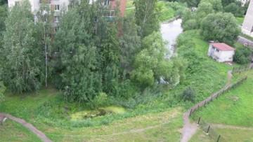 Пруд на участке, где планируется стройка