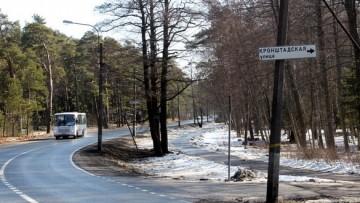 Кронштадтская улица в Солнечном