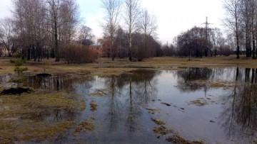 Затопило парк Интернационалистов