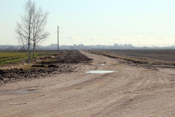 Дорога через поле Детскосельского