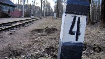 Малая Октябрьская (детская) железная дорога в Озерках