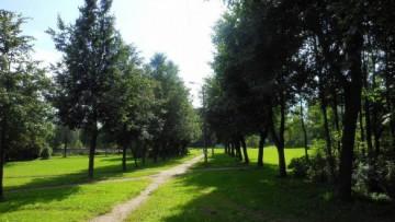 Можайский сквер, аллея