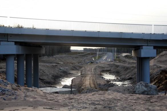 Железная дорога под путепроводом