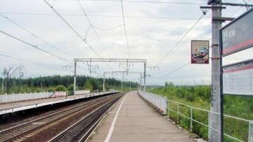 Платформа 29-й км в Колпинском районе