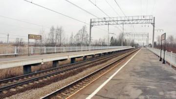Платформа 29-й км в Пушкинском районе
