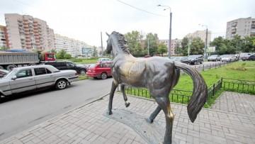 Лошадь на углу Дачного и Ветеранов