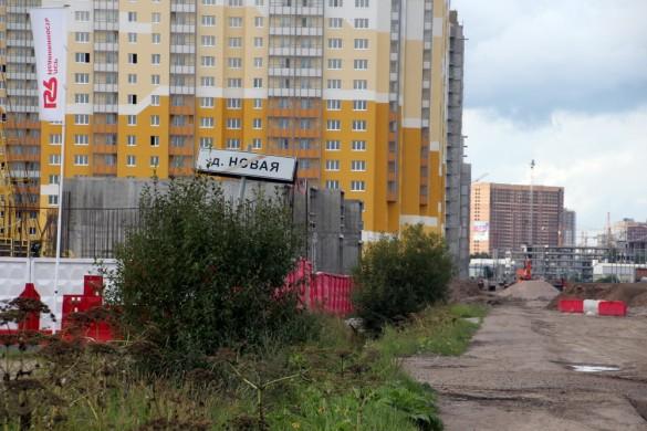 Муринская дорога, деревня Новая