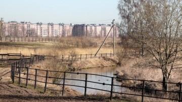 Река Славянка в Детскосельском