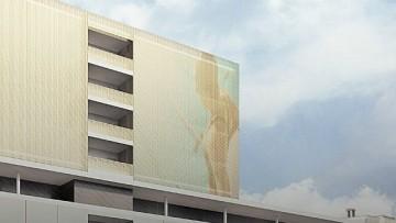 Девушка на фасаде в Приморском районе