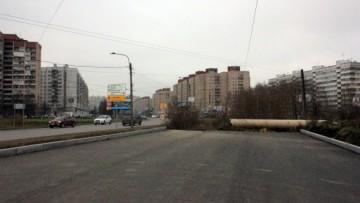 Богатырский проспект у Черной речки
