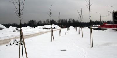 Бульвар на Муринской дороге