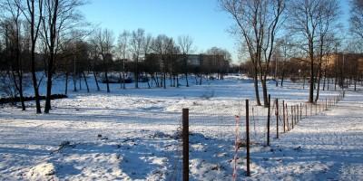Капитальный ремонт парка Куракина Дача