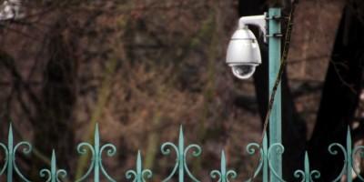 Видеонаблюдение в Таврическом саду