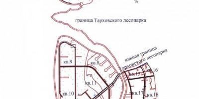 ППТ Сестрорецк