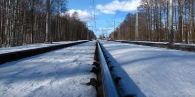 Железная дорога в Удельном парке