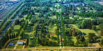 Парк на Митрофаньевском кладбище, аллеи