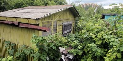 Садоводство Нева, дачные домики