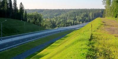 Сортавальское шоссе, леса
