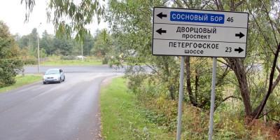 Указатель Дворцовый проспект