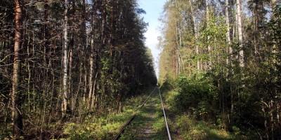Новоорловский заказник, железная дорога