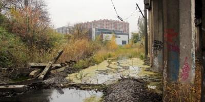 Варшавская линия, болото под путепроводом