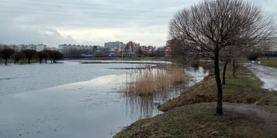 Волковский пруд