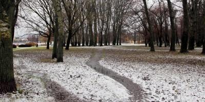 Колпино, парк на Красной улице, тропинки