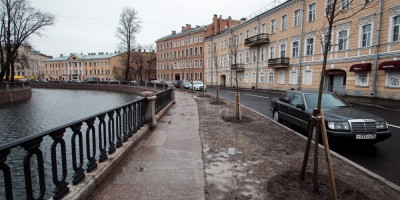 Набережная канала Грибоедова, новые саженцы