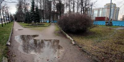 Московский проспект, 181, сквер, лужа