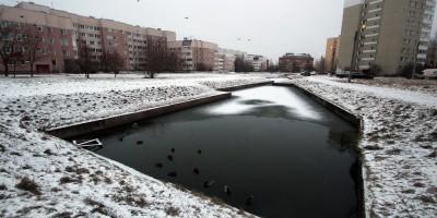 Пушкин, Ленинградская улица, пруд
