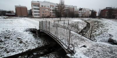 Пушкин, Ленинградская улица, пруд, мост