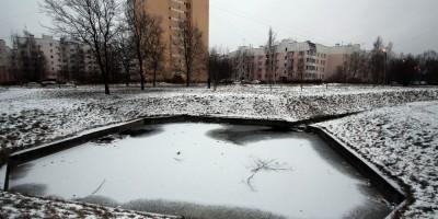 Пушкин, Ленинградская улица, пруд во дворе