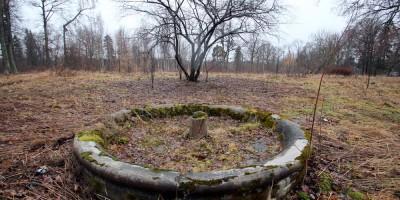 Усадьба Ратьковых-Рожновых в Ломоносове, фонтан