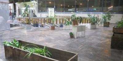 Зимний сад на Выборгской