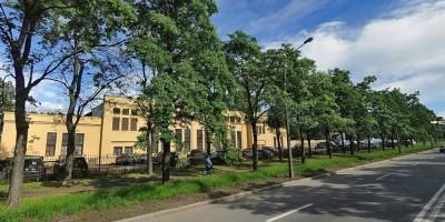 Улица Грибалевой